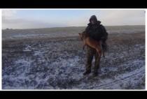 Охотник с убитой лисой