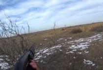 Охотник целится в лису