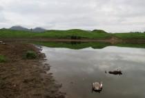 Охота на уток на озере