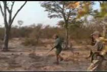 Охотник на сафари