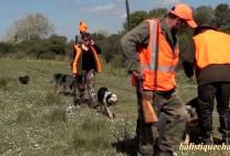 Охотники с собаками охот на кабана с вышки
