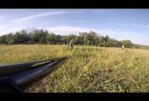 Охотник стреляет перепелу