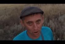 Охота на перепела на видео