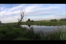 Бобровая река
