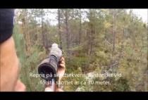 Охотник целится в медведя