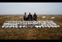 Охотники вместе с гусями
