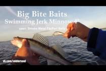 Рыбак поймал на спиннинг судака