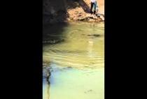 Рыбаки у реки