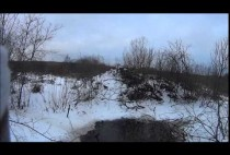 Бобровый пруд