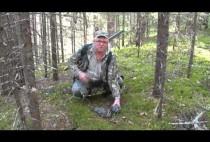 Охотник возле рябчика