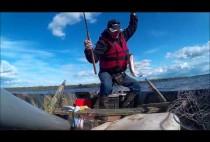 Рыбака вытащил судака из воды