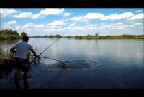 Рыбак подтягивает карпа к берегу