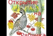 Картинка на которой нарисовали рябчика