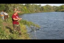 Рыбаки на берегу с удочками
