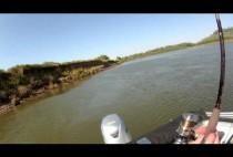 Берег реки Ахтуба