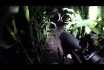 Охотник выслеживает барсука
