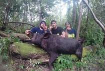 Охотник возле большого кабана