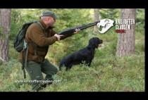 Охотник с собакой идут по лесу