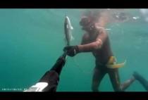 Подводный охотник добыл лобана
