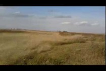 Осенне поле