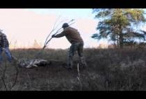 Охотник на волков