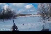 Охотник идет по заснеженному лесу