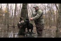 Охотник с собакой в затопленном лесу
