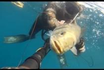 Подводный охотаник с пойманный окунем