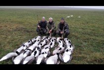 Охотники с гусями
