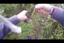 Рыбак демонстрирует щуку