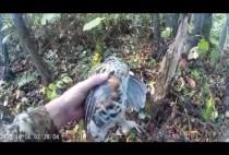 Охотник держит рябчика в руках