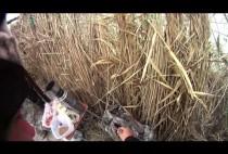 Завтрак охотника в камышах