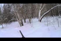 Охотник целится в косулю