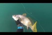Горбыль а руках рыбака