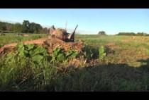 Охотник на гусей в засадке