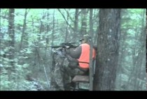 Охотник в засидке на дереве