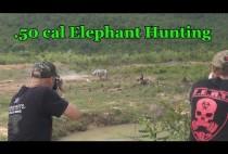 Охотники стреляют по мишени