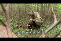 Охотник возле оленя