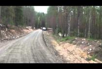 Лесная дорога в Финляндии