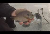 Рыбак держит пойманную рыбу в руках