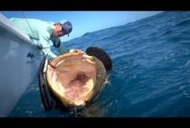 Рыбак вываживает крупную рыбу