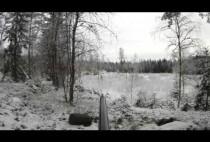 Норвежский охотник в засаде