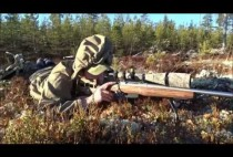 Финский охотник на тетеревов