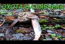 Рябчик и ружье на коряге