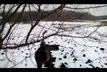 Охотник подвесил приваду для лисы