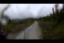 Лесная дорога покрытая лужами