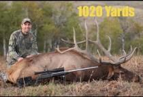 Охотник рядом с добытым оленем