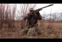 Охотник целится в волка из ружья
