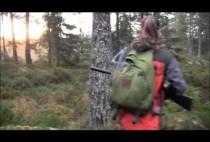 Охотница идет по лесу
