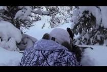 Охотник в снегу